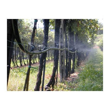 Impianti di irrigazione vigneto agro impianti for Irrigazione vigneto